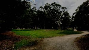 brookerpark_cropped_optimized-1